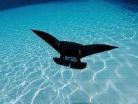 MantaDroid, un explorador marino robótico eléctrico que aletea