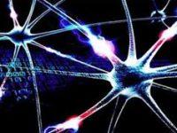 El Pentágono quiere que la IA se haga cargo del proceso científico