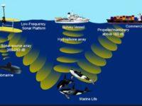 SAES analiza el ruido radiado al agua por buques